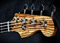 Billy Greer of KANSAS Custom Bass